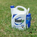 Roundup™ Cancer Claims Attorney