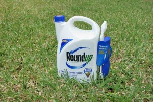 Glyphosate in Roundup™ weedkiller is a carcinogen
