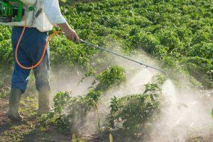Toxic Exposure on the Job